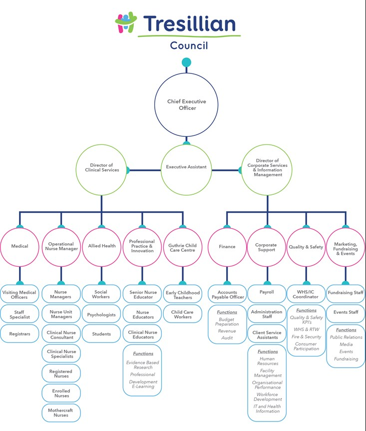 Tresillian Organisation Structure Chart 2015